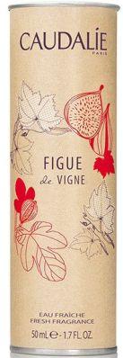 Figue de Vigne