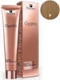 Gyptis 9