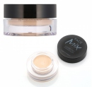 TONY MOLY Facemix Cover Pot Concealer 01