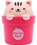 Lovely Meex Mini Pet Cream
