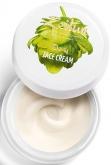 Day Face Cream