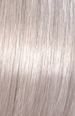 Color Touch Smoky Blonde 9/96