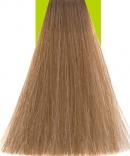 Hair Color 8 Light Blonde