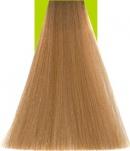 8.03 Warm Light Blonde