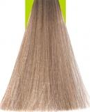9.1 Very Light Ash Blonde