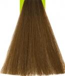8.32 Light Beige Blonde