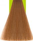 8.3 Light Gold Blonde