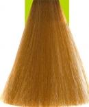 8.33 Light Blonde Extra Gold