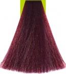 6.2 Dark Violet Blonde