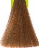 8.23 Light Chocolate Blonde