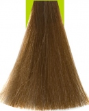 8.73 Light Chocolate Blonde