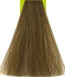 8/2 Light Green Matte Blonde