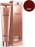 Gyptis 6/66