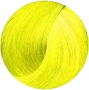 Revolution Neon Atomic Yellow