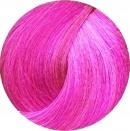 Revolution Neon Eccentric Pink