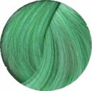 Revolution Pastel Green